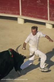 France, Provence, Camargue, course libre, bull games