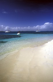 Grenadines - Caribbean - Palm Island