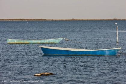 18 04 2011 - Les Saintes Maries de la Mer -  on Les Imperiaux pond