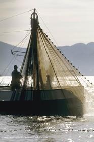 Pêche, barques, pointus, pêcheurs