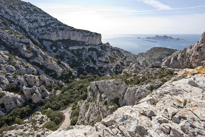 18 04 2009 - Marseille (FRA, 13) - Les Calanques - Vallon de la Mounineè