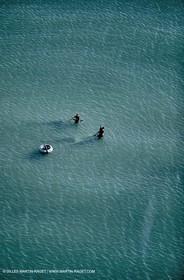 Telline seafarers on Camargue beaches