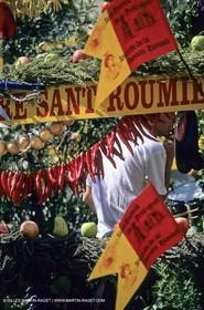 Saint Rémy de Provence (FRA,13) - Careto ramado (charrette fleurie)