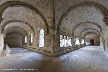04 05 2008 - Arles (FRA,13)  - Montmajour Abbeye