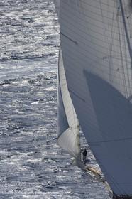 07 10 2006 - Saint Tropez (Fr) - Voiles de Saint Tropez 2006 - Classic Yachts - Eleonora