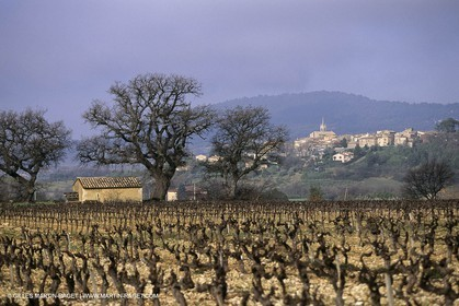 Luberon in winter near Saint Satrunin les Apt (FRA,84)