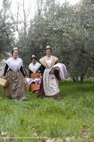 18 02 2007 - Saint Rémy de Provence - Queen of Arles in the Alpilles