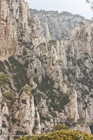20 03 2009 - Marseille (FRA, 13) - Les Calanques - l'Oule clifs and brèche de Castelviel