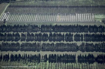 Agriculture near Eyguières