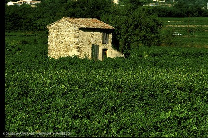 Luberon - Cant detail